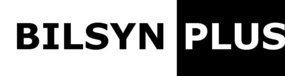 bilsyn plus logo.jpg