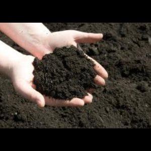 Muldjord - billede 1