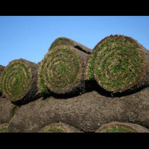 Græstørv - billede 1