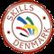 DK Skills