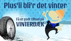 Vinterdaek
