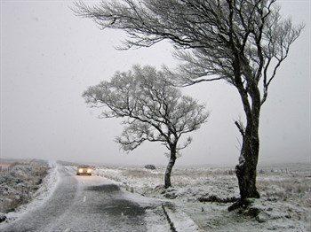 En mild vinter er også hård ved bilen | Vestjysk Bilbrancheforening