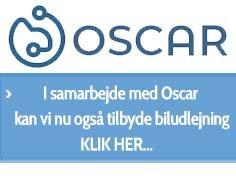 kampagne-oscar.jpg