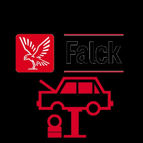 falck-book.png