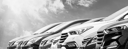 Brugte biler til salg hos Bilhjørnet Haslev